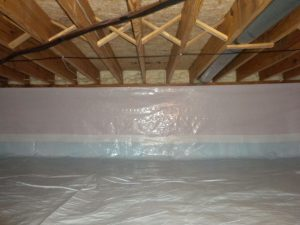 Basement Encapsulation mold testing in Virginia